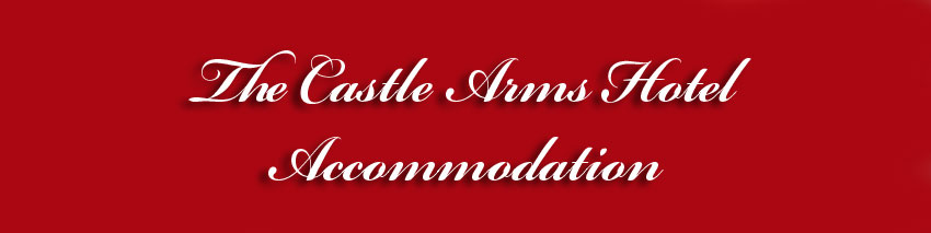 The Castle Arms Hotel - Accommodation